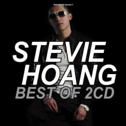 Best Of Stevie Hoang -2CD-R- / Tape Worm Project【M便 2/12】