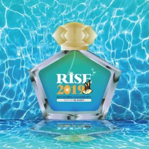 今流行の洋楽トレンドを完全網羅!【洋楽 CD・MixCD】Rise -2019 Best Of Spring & Summer Hits- / DJ Kohey【M便 2/12】