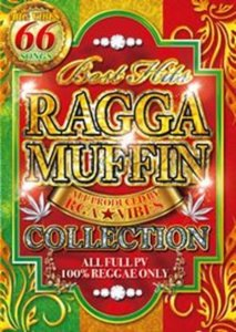 120%レゲエな1枚!【洋楽DVD・MixDVD】Best Hits Ragga Muffin Collection / RGA★Vibes【M便 6/12】